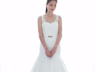 Elegant Lace V-neckline beaded Mermaid WeddingDress