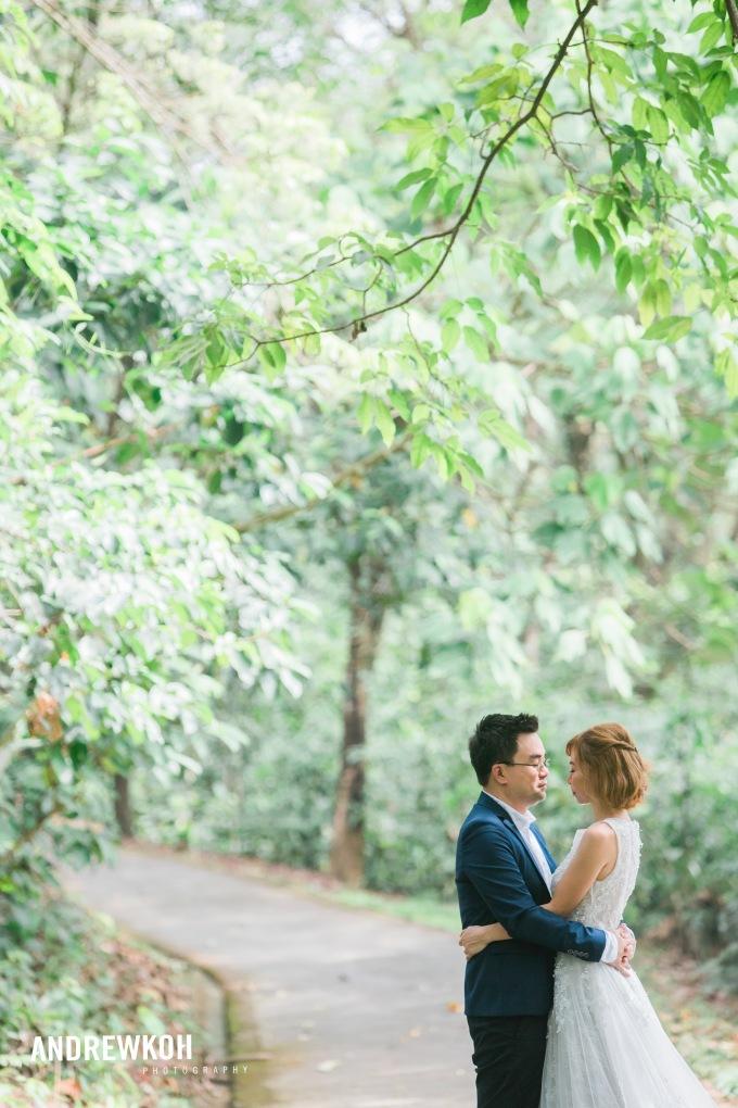 Overseas and Local Pre WeddingPhotographer