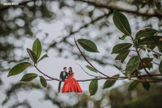 Premium Wedding and Evening GownsMalaysia
