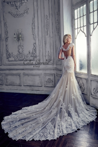 Wedding Gowns For Rent and For Sale